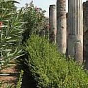 Pompeii Columns 2 Art Print
