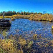 Pond 1 Today.psd Art Print