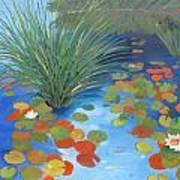 Pond Revisited Art Print