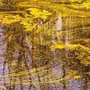 Pond Scum Three Art Print