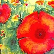 Poppies Face To The Sun Art Print
