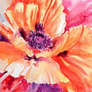 Poppy Fiesta Art Print