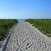 Popular Beach Path Art Print