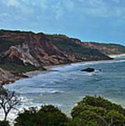 Praia De Tambaba - Paraiba Art Print