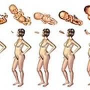 Pregnancy, Artwork Art Print