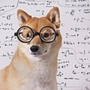 Professor Dog Art Print