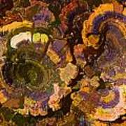 Psychedelic Fungi Art Print