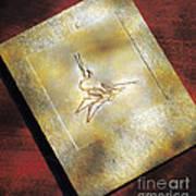 Pterodactylus Elegans Art Print