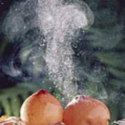 Puffballs Releasing Spores Art Print
