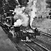 Puffing Billy Black And White Art Print