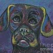 Puggle In Abstract Art Print