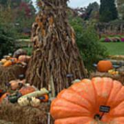 Pumpins And Gourds Art Print
