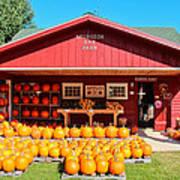 Pumpkin Barn Art Print by Rachel Cohen