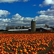 Pumpkin Farm Art Print