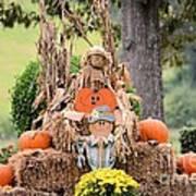 Pumpkin Harvest 2012 Art Print