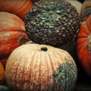 Pumpkin Mix Art Print