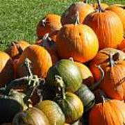 Pumpkin Pile  Art Print
