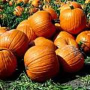 Pumpkin Pileup Art Print