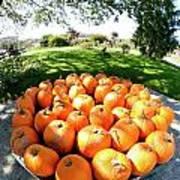 Pumpkin Round Art Print