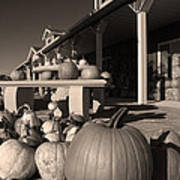 Pumpkins At The Farm Market October Art Print