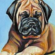 Pup For Ben Art Print