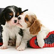 Puppies With Rain Boots Art Print by Jane Burton