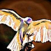 Pure Whtie Raptor Art Print by Carrie OBrien Sibley