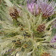 Purple Cacti With Pollinated Beetle Art Print