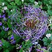 Purple Flower Sphere Art Print
