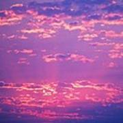Purple Sky  Art Print by Kevin Bone