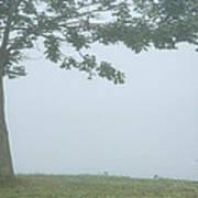 Quiet Fog Rolling In Art Print