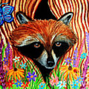 Raccoon And Butterfly Art Print