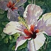 Radiant Light - Hibiscus Art Print