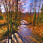 Raging River Near Preston Art Print