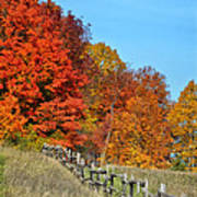 Rail Fence In Fall Print by Peg Runyan