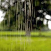 Rain Falling Art Print