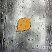 Rain On Window With Leaf Art Print
