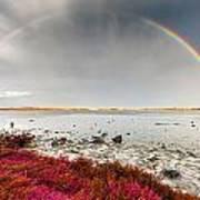 Rainbow By The Lake Art Print