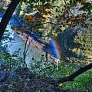 Rainbow Through The Rough Art Print