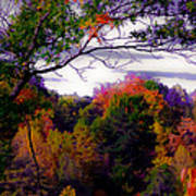 Rainbow Treetops Art Print by DigiArt Diaries by Vicky B Fuller