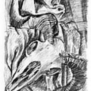 Ram Skull Still-life Art Print