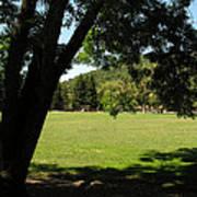 Rancho Laguna Park Art Print