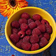 Raspberries In Yellow Bowl Art Print