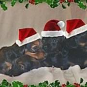 Ready For Christmas Art Print
