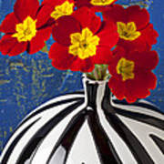 Red And Yellow Primrose Art Print by Garry Gay