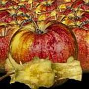 Red Apples And Core Art Print