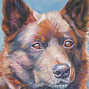 red Australian Kelpie Art Print