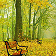Red Benches In The Park Art Print
