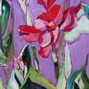 Red Canna Lily Art Print by Suzanne Willis