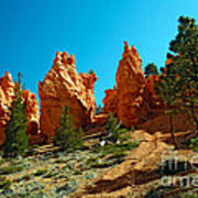Red Canyon Trail Art Print